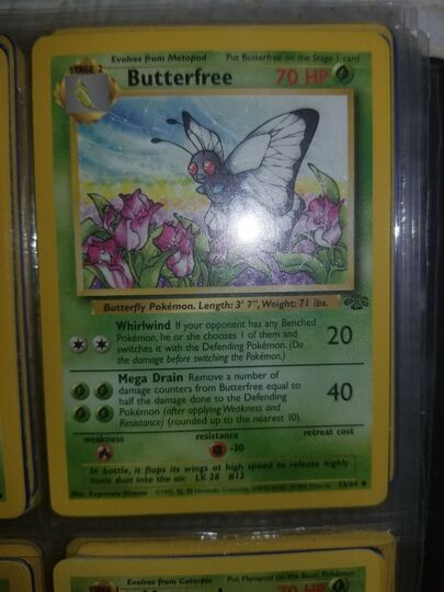 33/64 butterfree