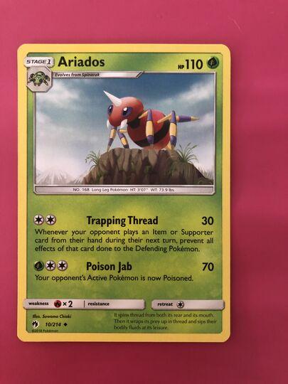Ariados Collection Image