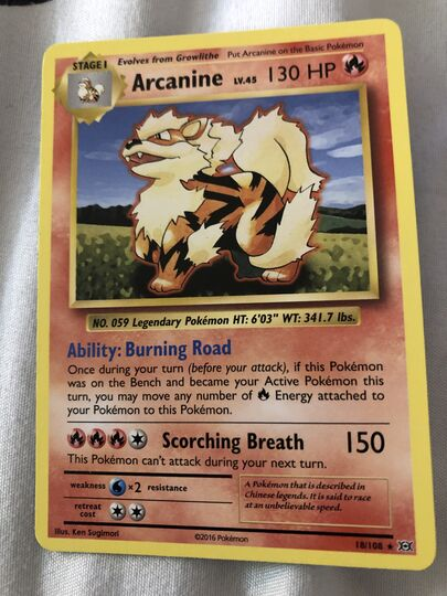 Arcanine Collection Image