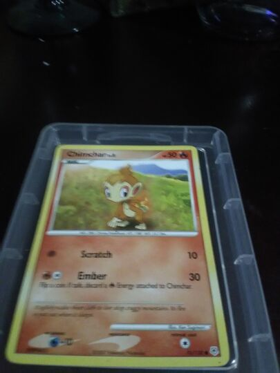 chimchar card