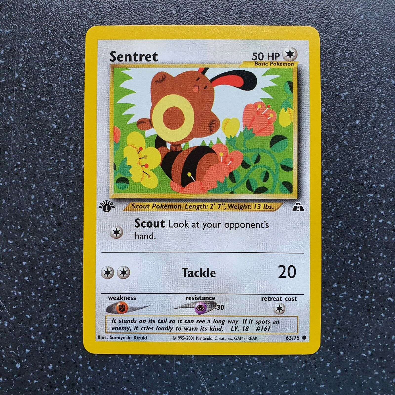 MINT Pokemon SENTRET 63//75 1st Edition Neo Discovery