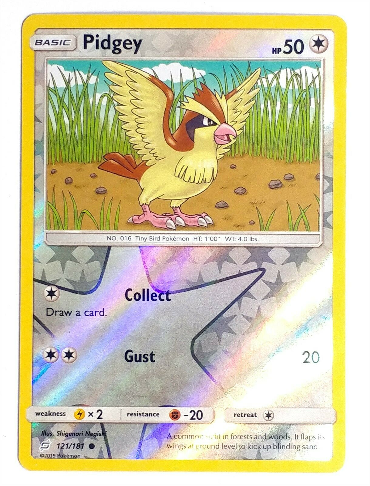 PIDGEY POKEMON TEAM UP CARD 121//181